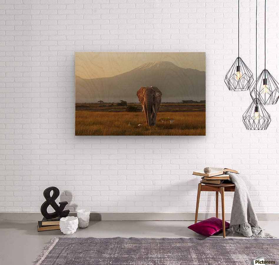 Under the roof of Africa  Wood print