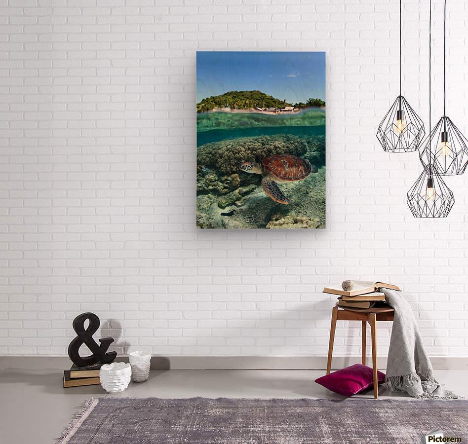 Along shore  Wood print
