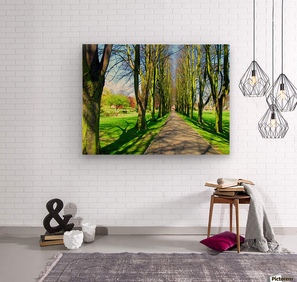 Summer Avenue  Wood print