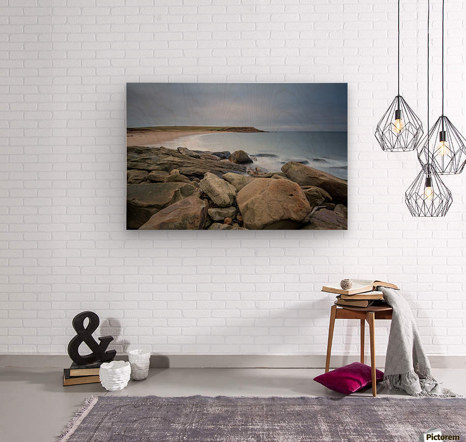 Sands of Whale Cove  Wood print