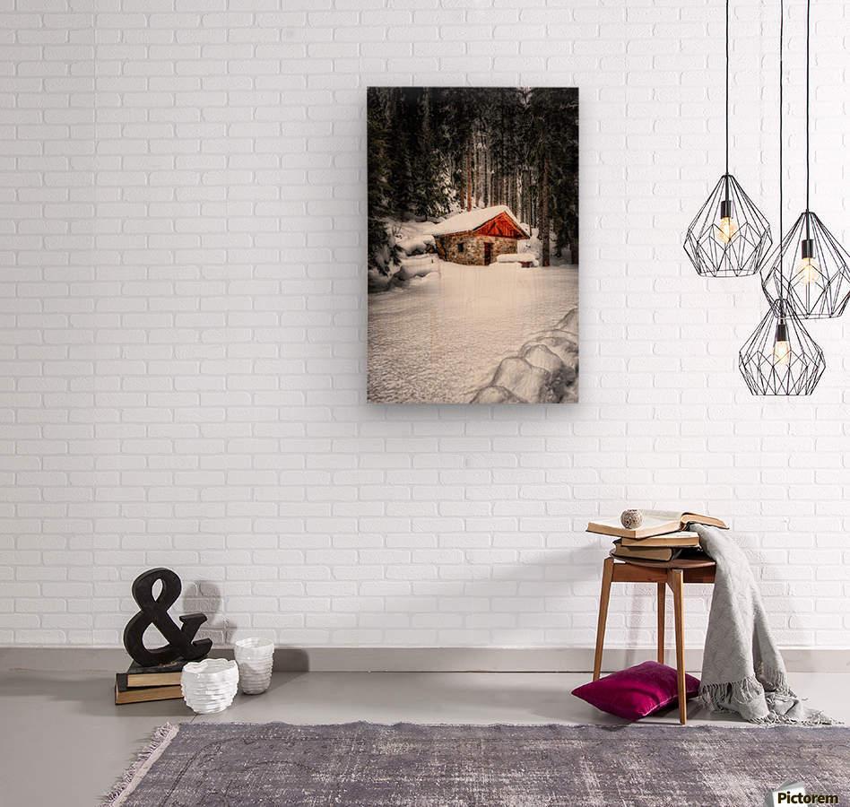 The Alps  Wood print