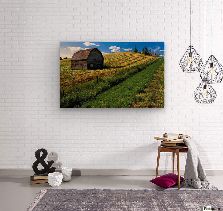 Old Barn In A Field  Wood print