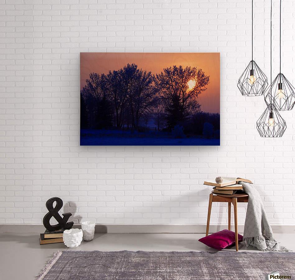 Sun Peeking Through Some Trees  Wood print