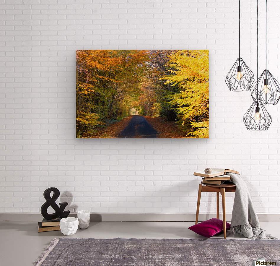 Rural Road, Argyll And Bute, Scotland  Wood print