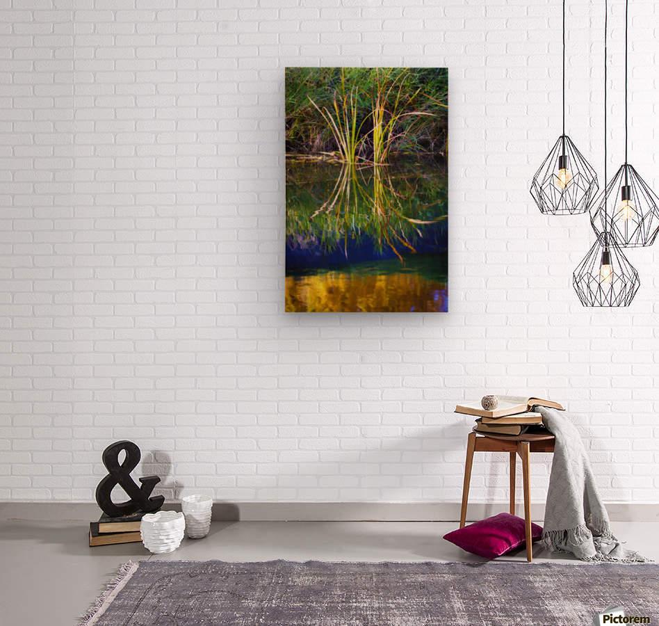 Reeds Reflecting On The Water; St. Albert, Alberta, Canada  Wood print