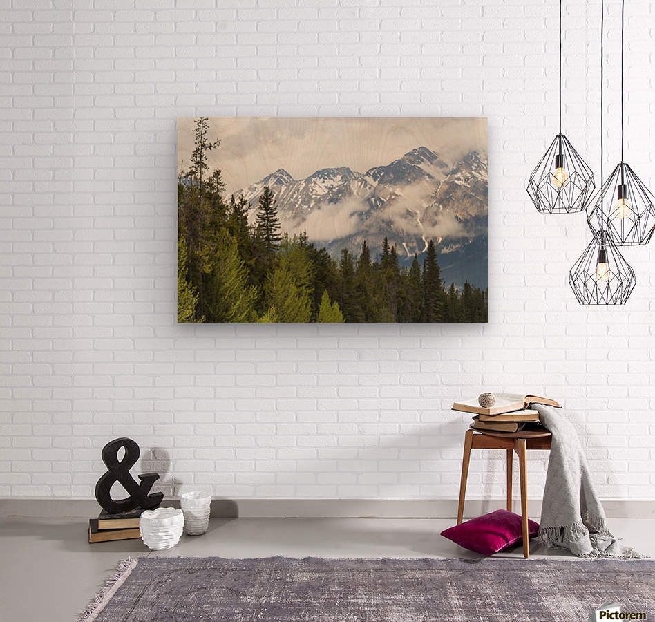 A Forest And The Rocky Mountains; Jasper, Alberta, Canada  Wood print