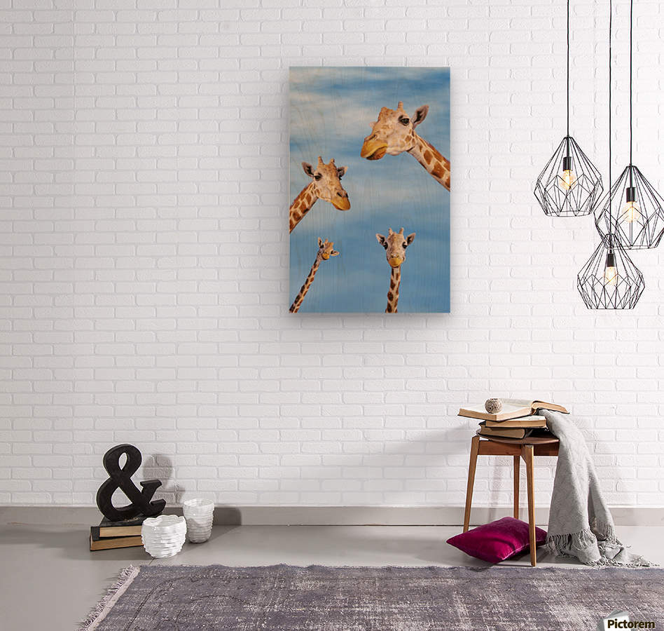 Four giraffes looking downward;Africa  Wood print