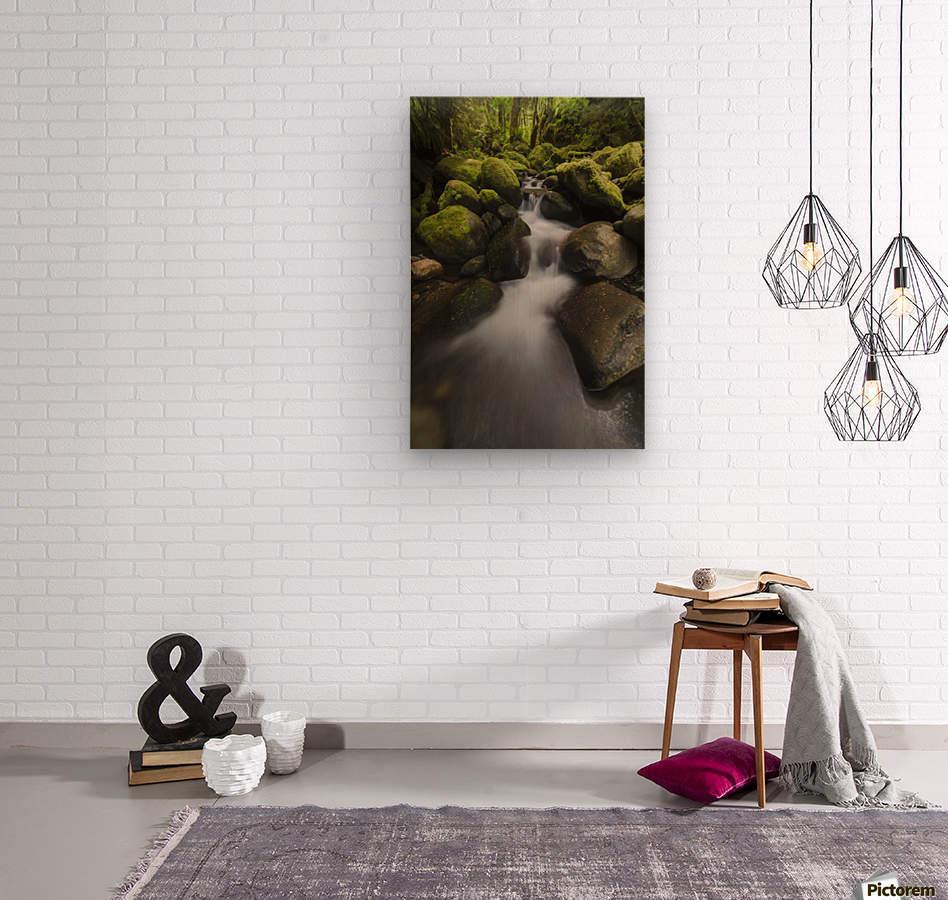 Ruckel Creek; Oregon, United States of America  Wood print