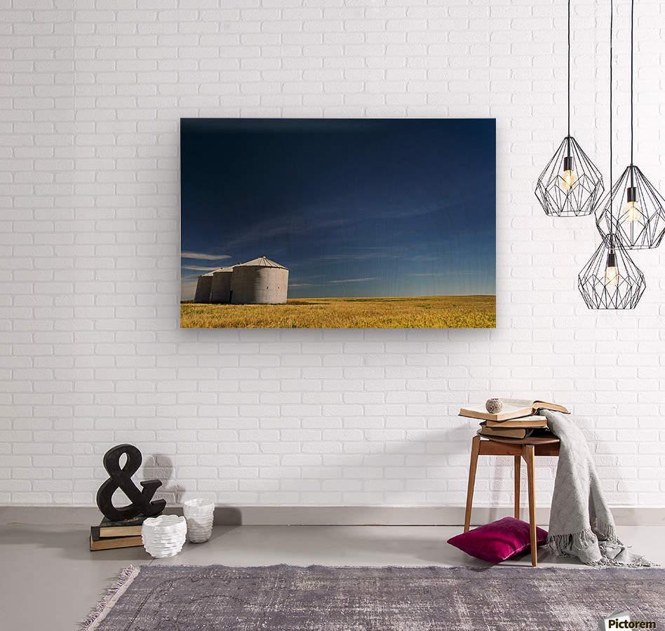 Large metal grain bins in a barley field with blue sky and wispy clouds; Acme, Alberta, Canada  Wood print