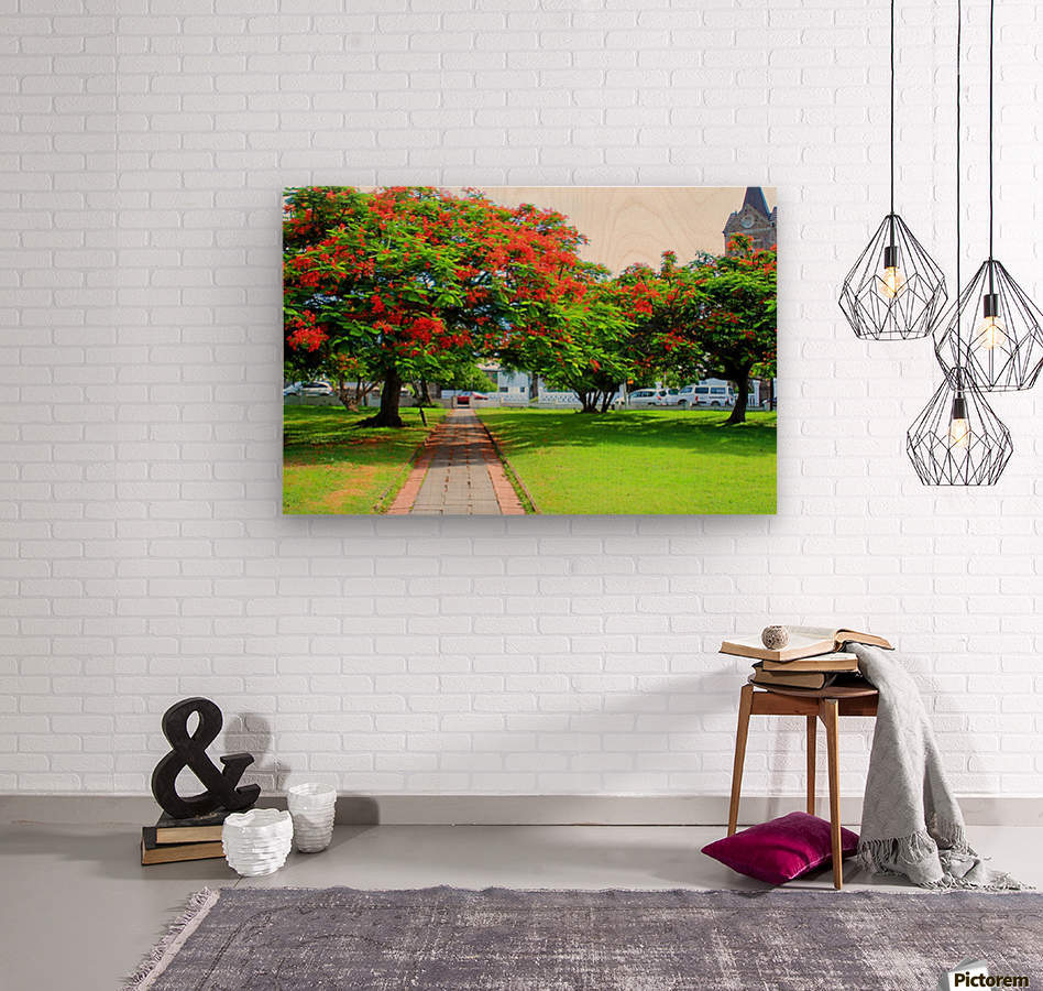 St Kitts Independence Square5  Wood print