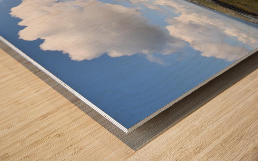 INIS MOR, THE ARAN ISLANDS Wood print