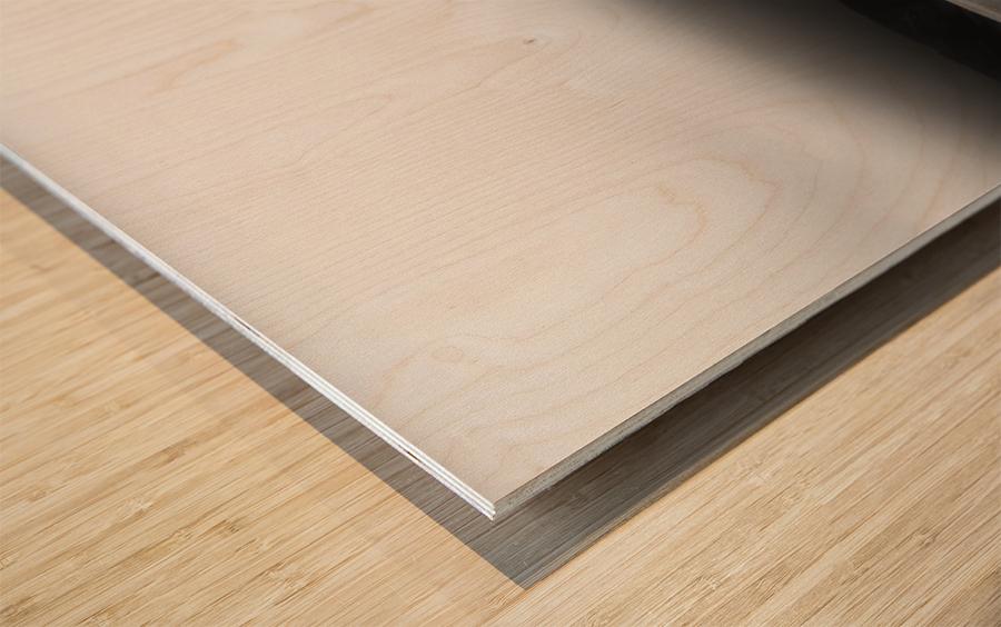 ways of the world Wood print