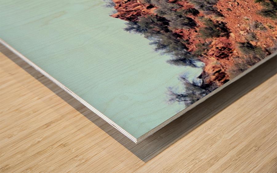 Jerome-6 Wood print