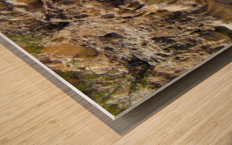 Montezuma's Castle-11 Wood print