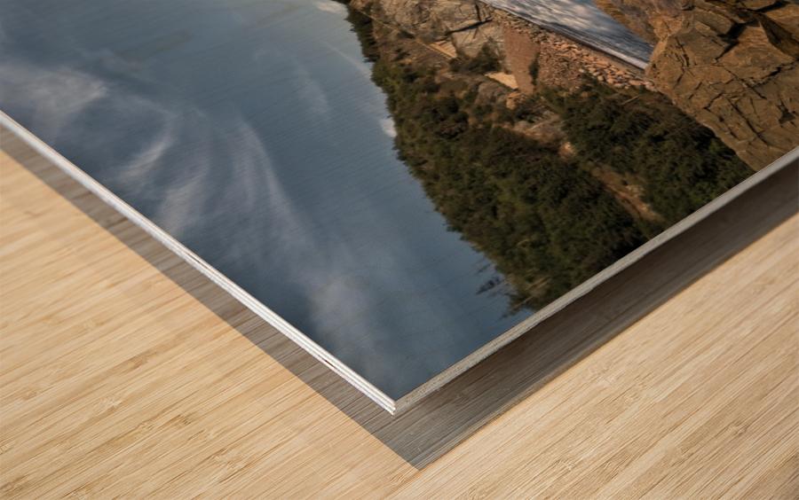 Visions of Grandeur Wood print
