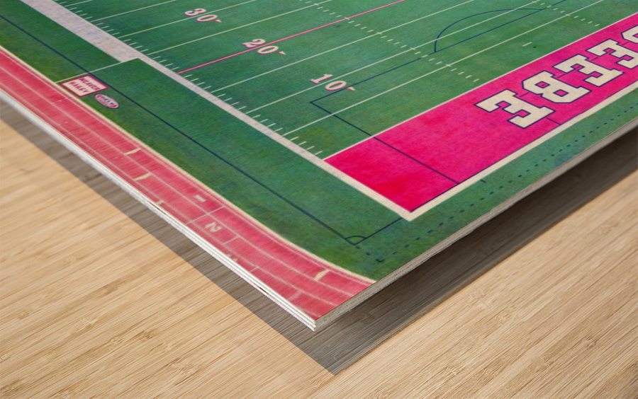 Beebe, AR | Badger Football Field Wood print