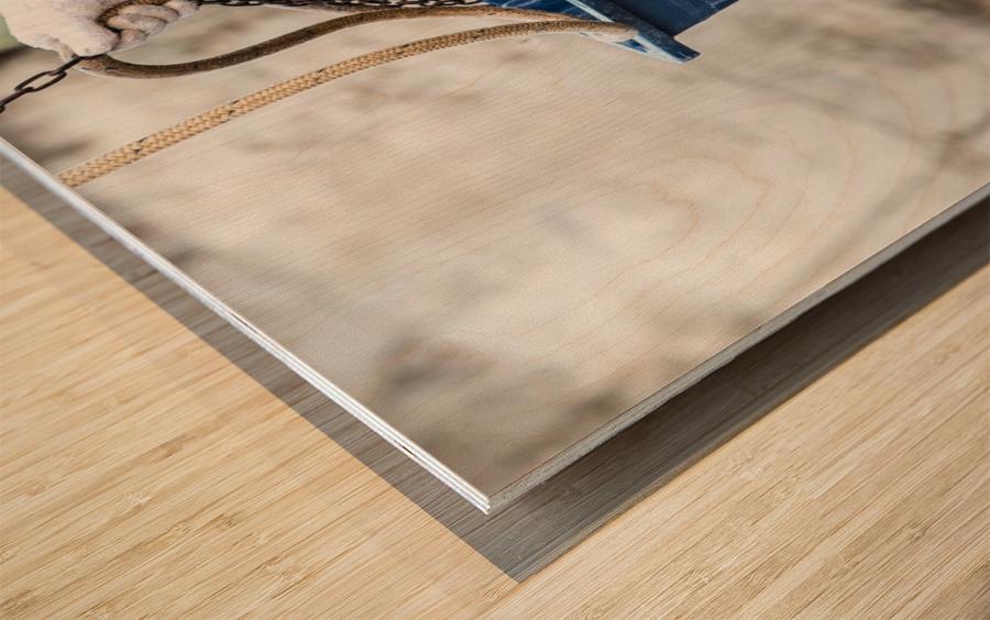 Snowcrab Wood print