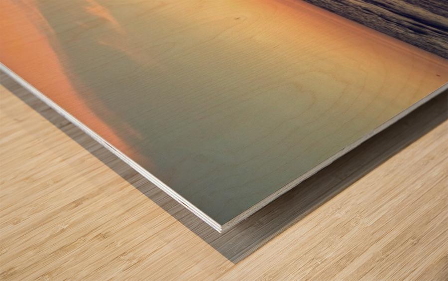 sun kiss Wood print