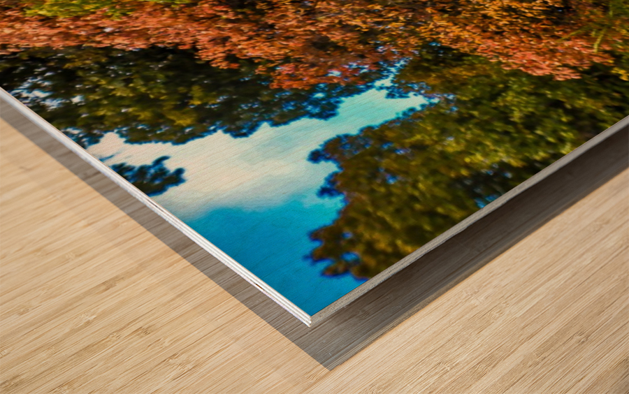 Nature in Fall Wood print