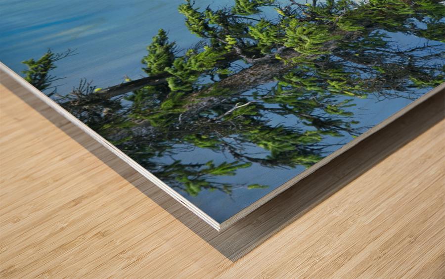 Natural order Wood print