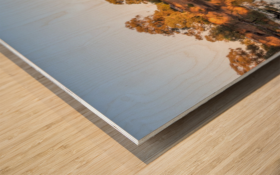 Reflections on the Murray River Wood print