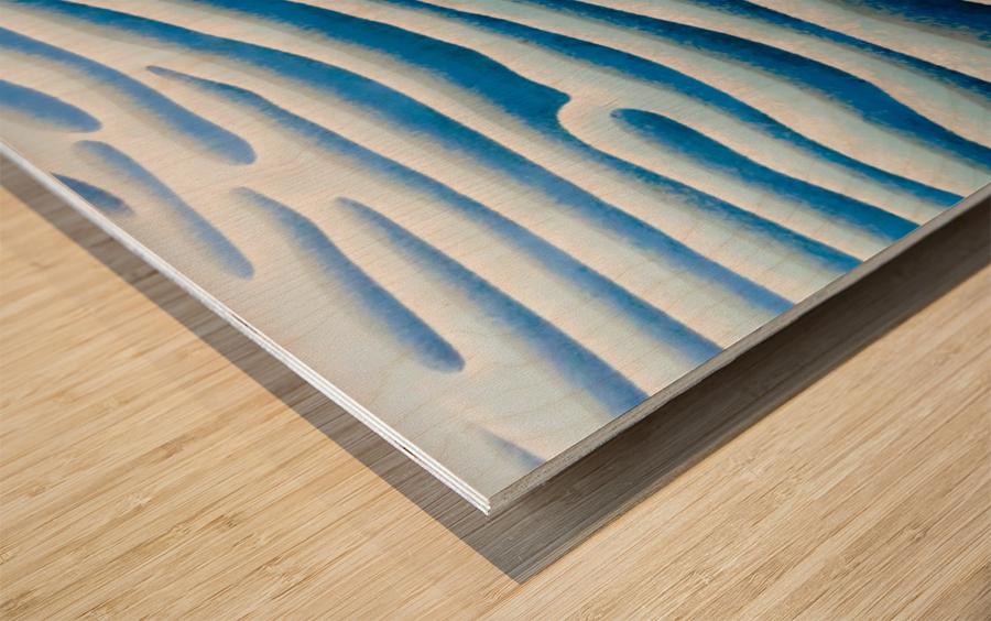 The Ice Field - La Banquise Wood print