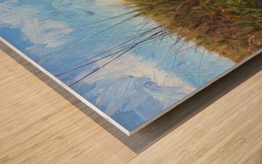 A Trail to the Beach Wood print