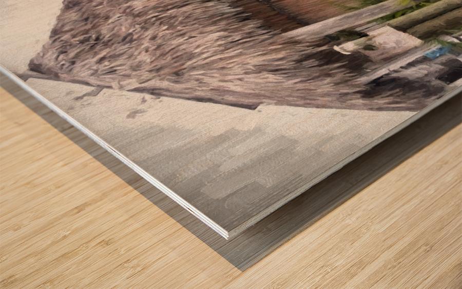 Hut Wood print