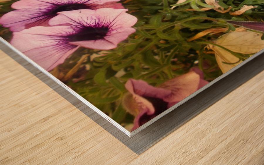 DSCN0649 Wood print