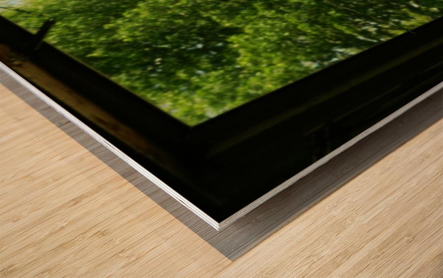 sofn-0E9AC9CD Wood print