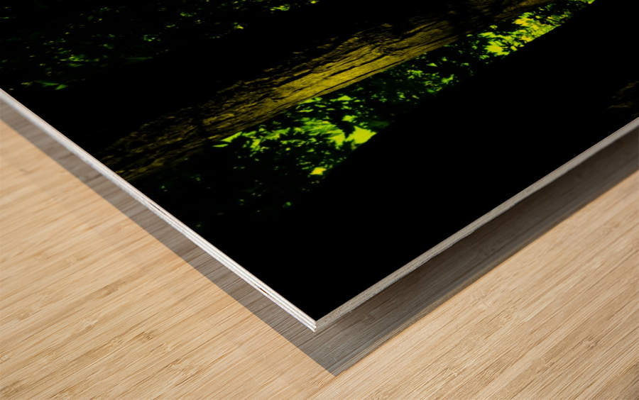 B (4) Wood print