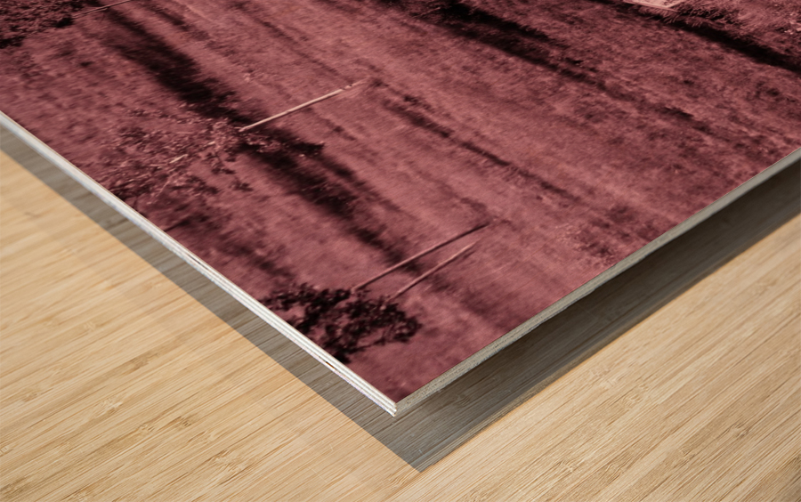 B (12) Wood print