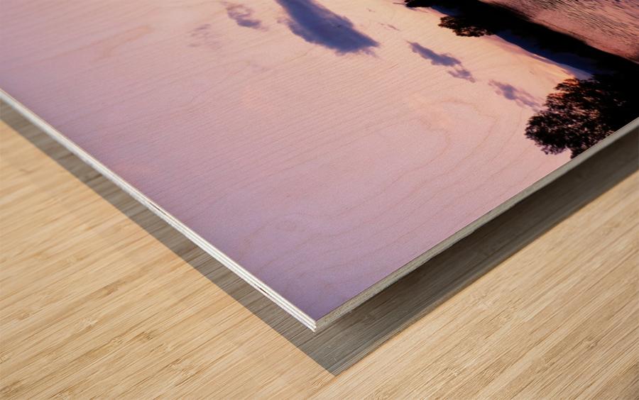 B (14) Wood print
