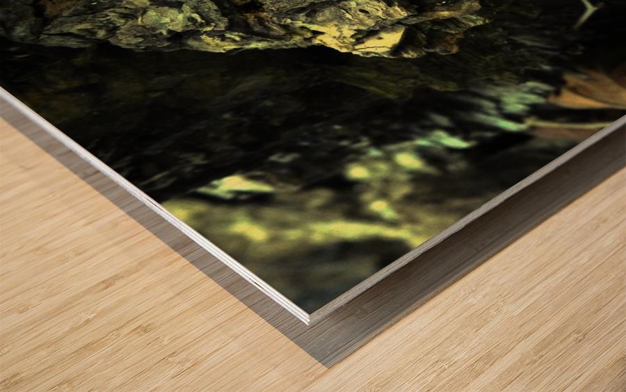 B (3) Wood print