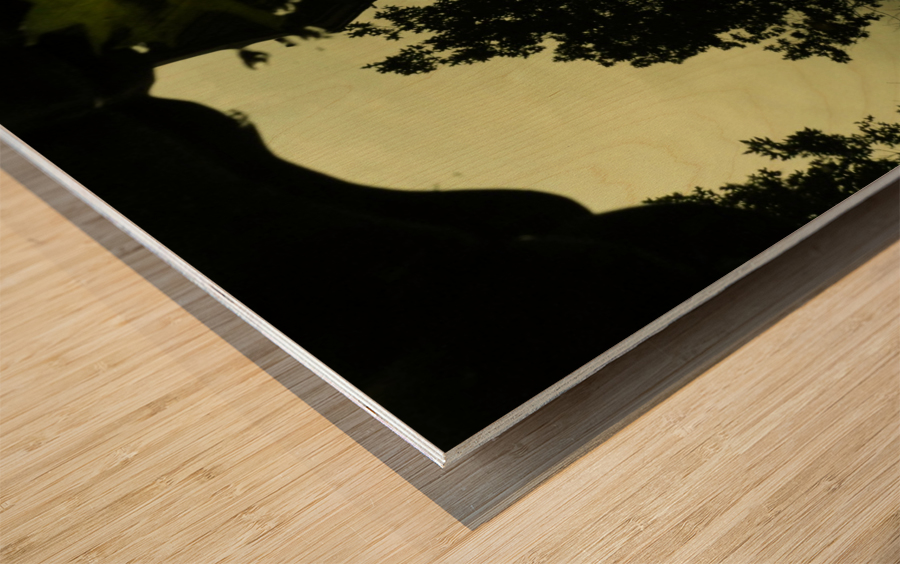 sofn-2B688FDF Wood print