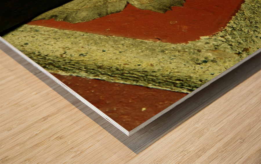 sofn-4D749FB8 Wood print