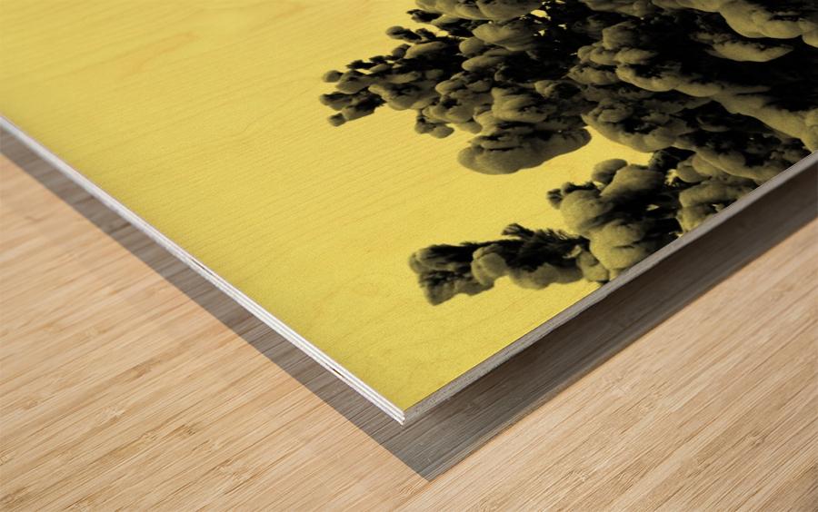 D (10) Impression sur bois