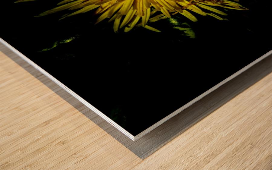 D (6) Wood print