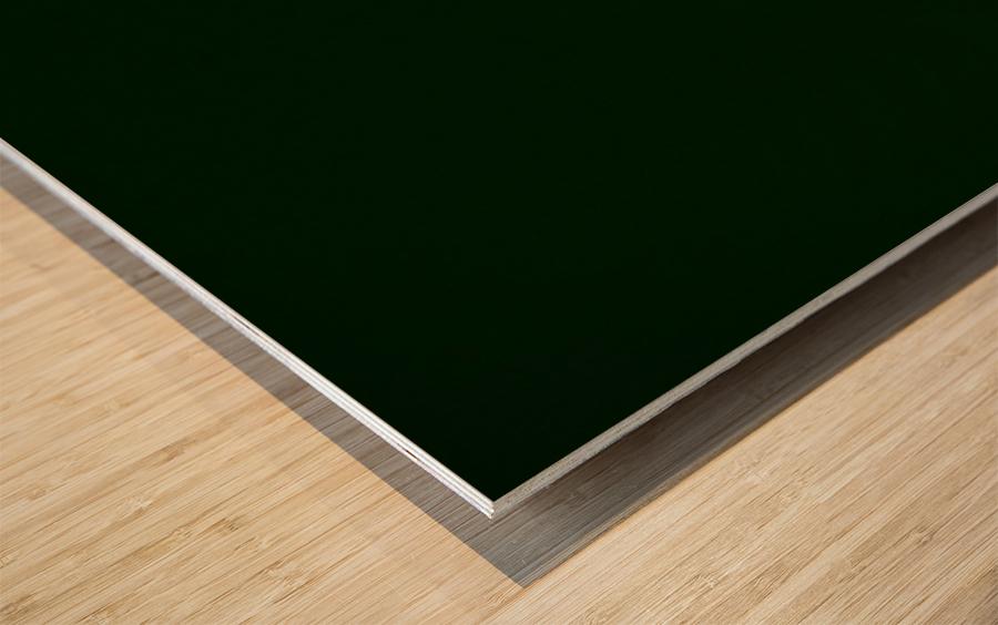 E (4) Impression sur bois