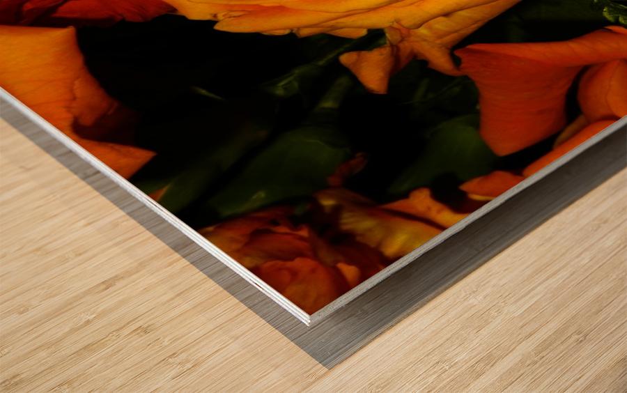 sofn-6411E9A2 Wood print