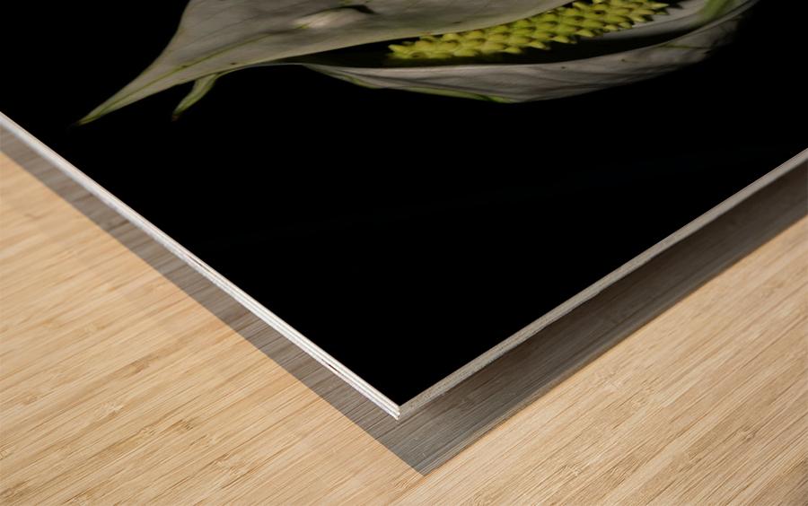 F (1) Impression sur bois