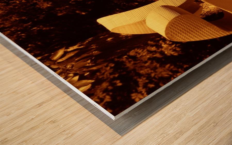 G (11) Impression sur bois