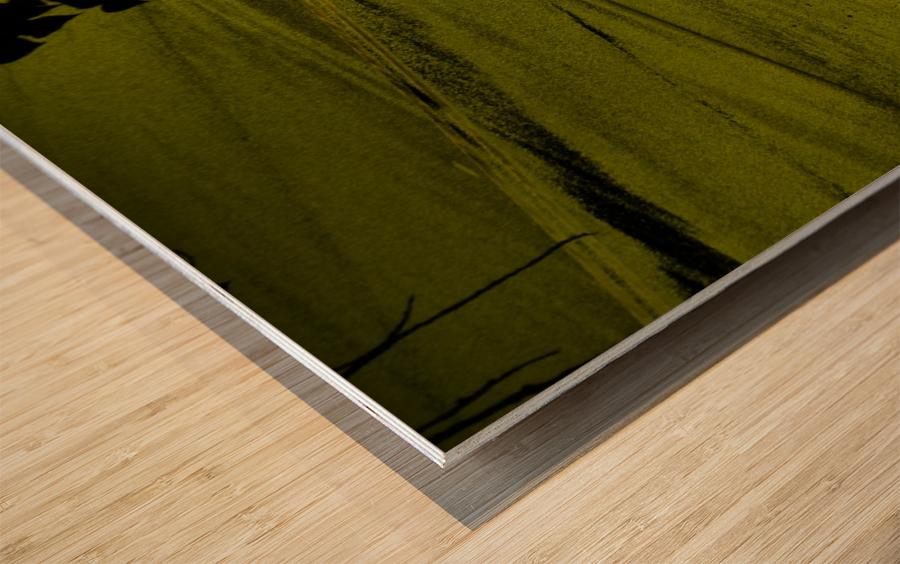sofn-330900A2 Wood print