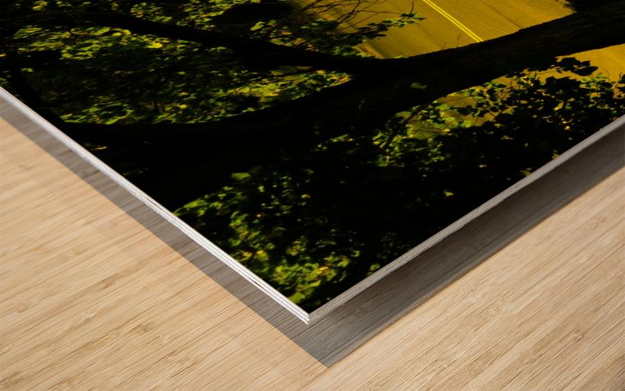 H (14) Wood print