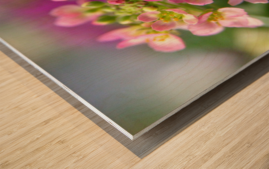 Small Pink Flowers Photography Wood print