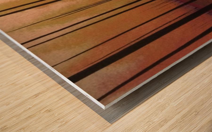Sherbert Forest Wood print
