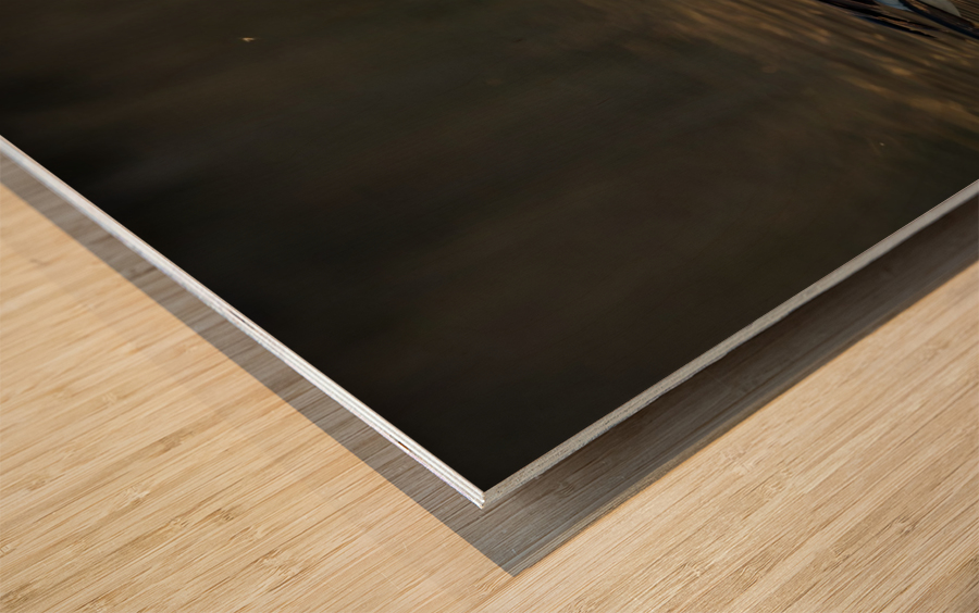 _T8C4044 Wood print