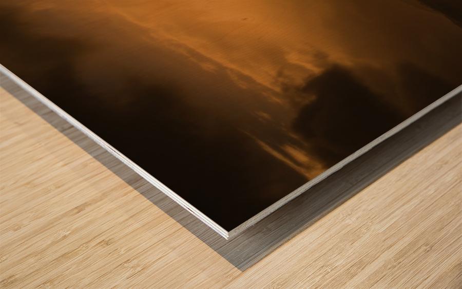 _S9A2102 Modifier 3 Wood print