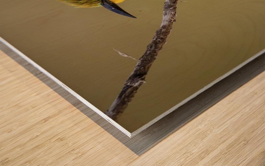 164A1450 Modifier Wood print