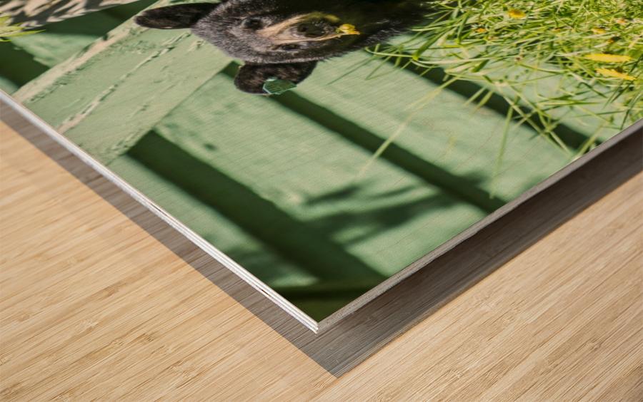1 11 Wood print